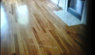 Tiger Wood Hard Wood Floor